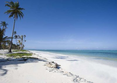 white-beach_tn_Baraza_resort_spa